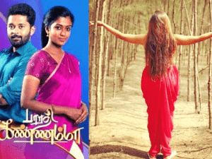 Popular 'Bharathi Kannamma' serial actress surprises fans announcing her pregnancy; shares cute baby-bump pics!